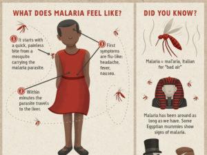 Malaria Treatments